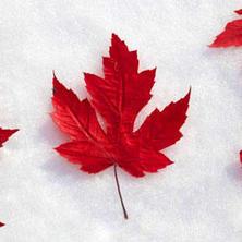 Зачем учиться в Канаде?