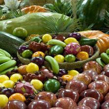 AVUSTRALYA: yiyecek içecekler ve yemek