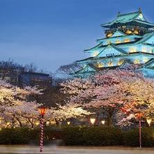 Nhật Bản: điểm đến du học nhiều thế mạnh